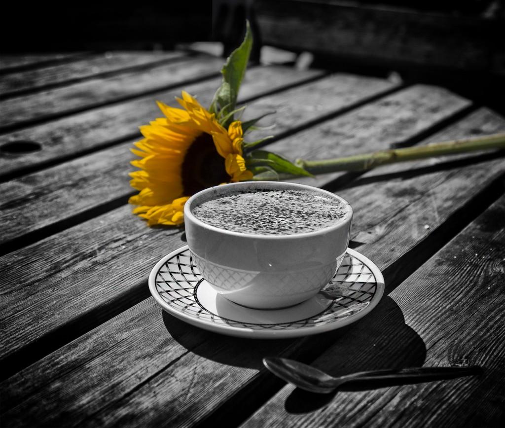 hot chocolate and sunflower - UK street Photography