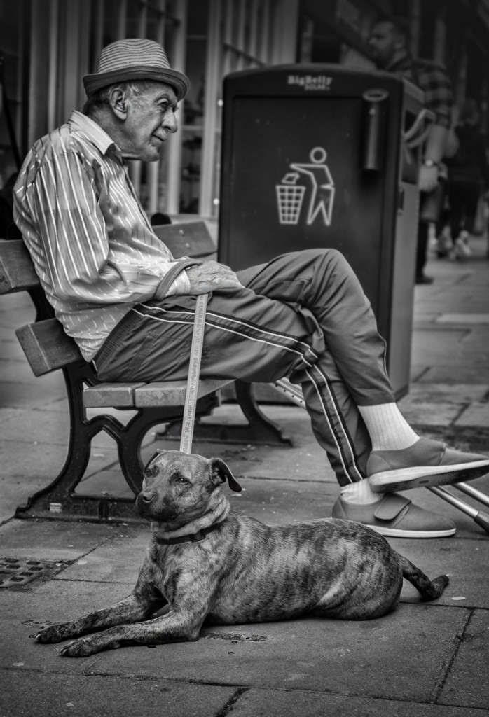 man and dog- UK street Photograph