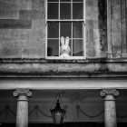 window bunny - UK street Photography
