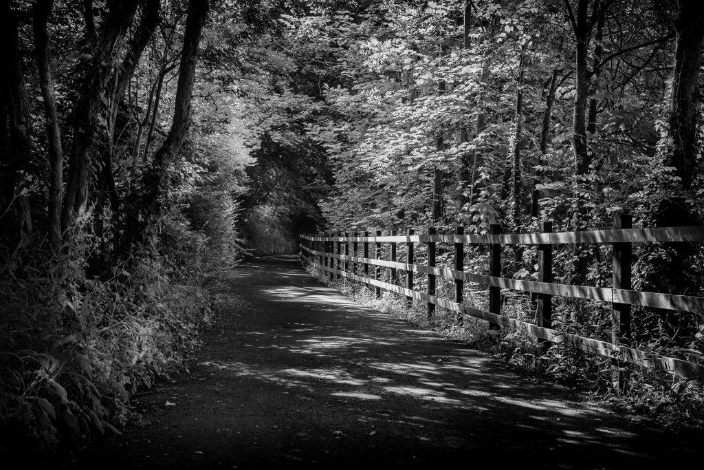 River walk - Bath street photography